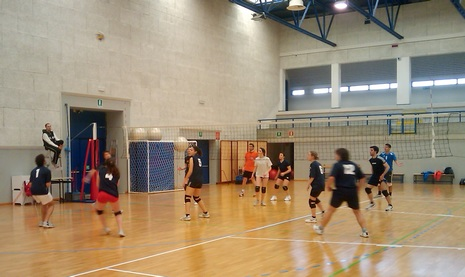 dirsvago 2010 volley 1