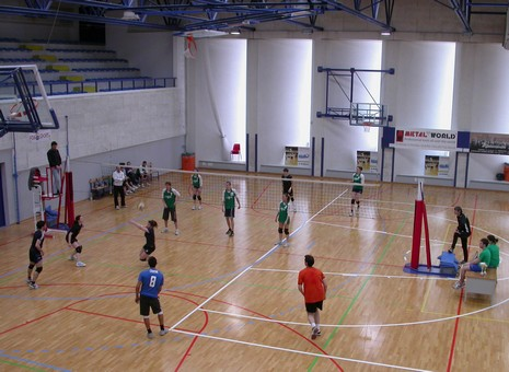 dirsvago 2010 volley 3