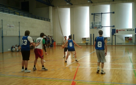 dirsvago2010 basket 1