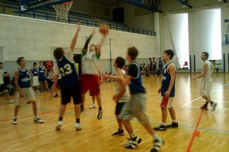 dirsvago2010 basket 2